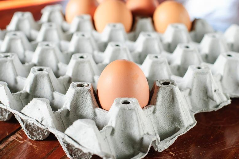 egg-636947_1280